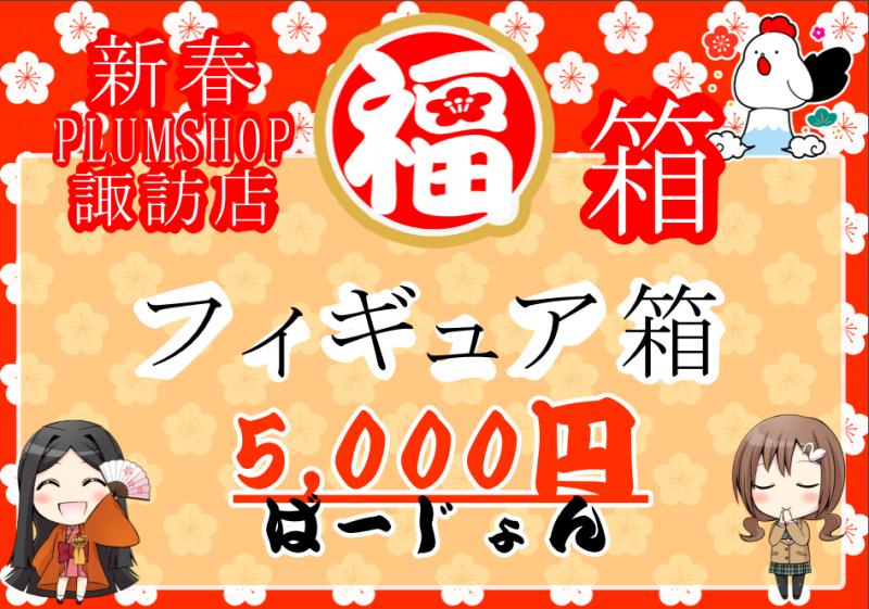 【福袋】プラムショップ「フィギュア箱 5000円ばーじょん」開封
